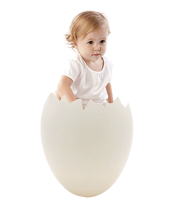 improve egg quality