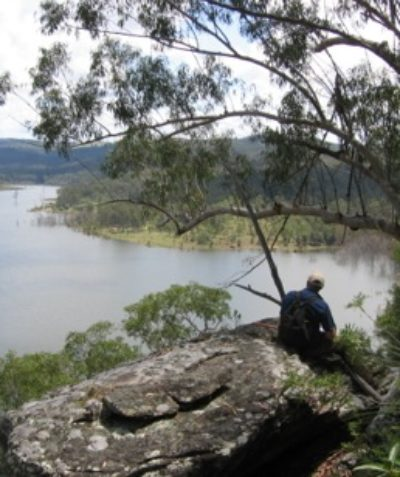 Ecologist monitoring of threatened species and forest communities, vertebrate pests and phytophthora root rot, Shannon Creek Dam via Grafton
