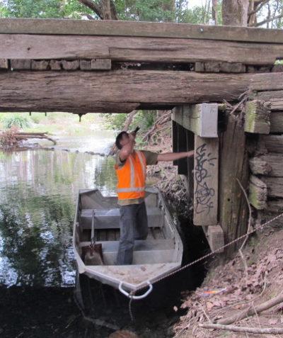 Threatened microbat roosting ecologist assessment of old bridge, Bellingen