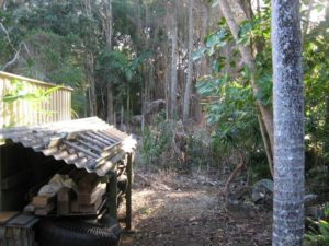 Ecologist bush fire vegetation assessment and Review of Environmental Factors (REF) of wetland vegetation adjoining houses, Ballina Shire Council