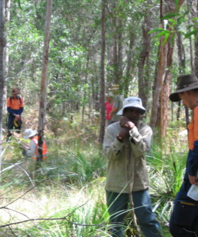 Ecologist inspection for archeological assessment, Pacific Highway upgrade south of Ballina
