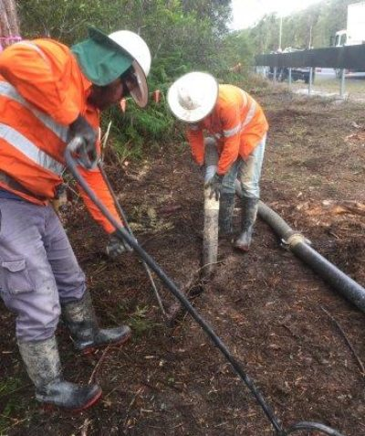 Arborist structural tree root impact assessment, report and recommendations, Swamp Mahogany, Wardell Road via Ballina
