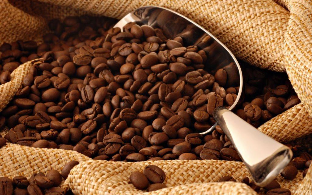 กว่าจะมาเป็นกาแฟ
