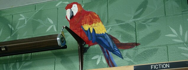 Kids Mural - Macaw in Amazon Mural in School Library