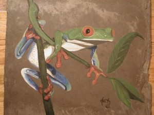Kids Mural - Red Eyed Tree frog on Slate