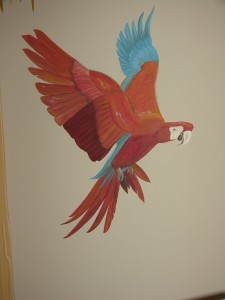 Kids Mural - Macaw in Pirate room