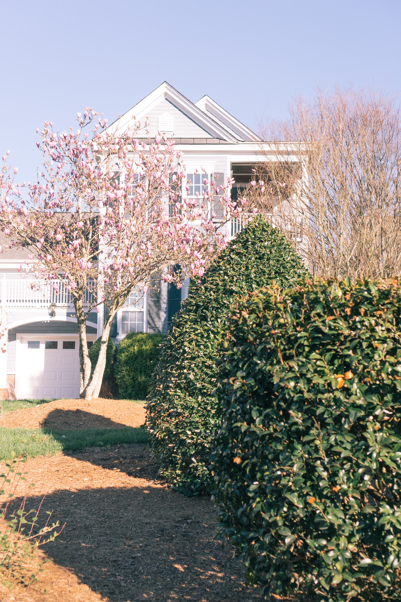 Charlotte, NC in the Spring | Louella Reese Life & Style Blog