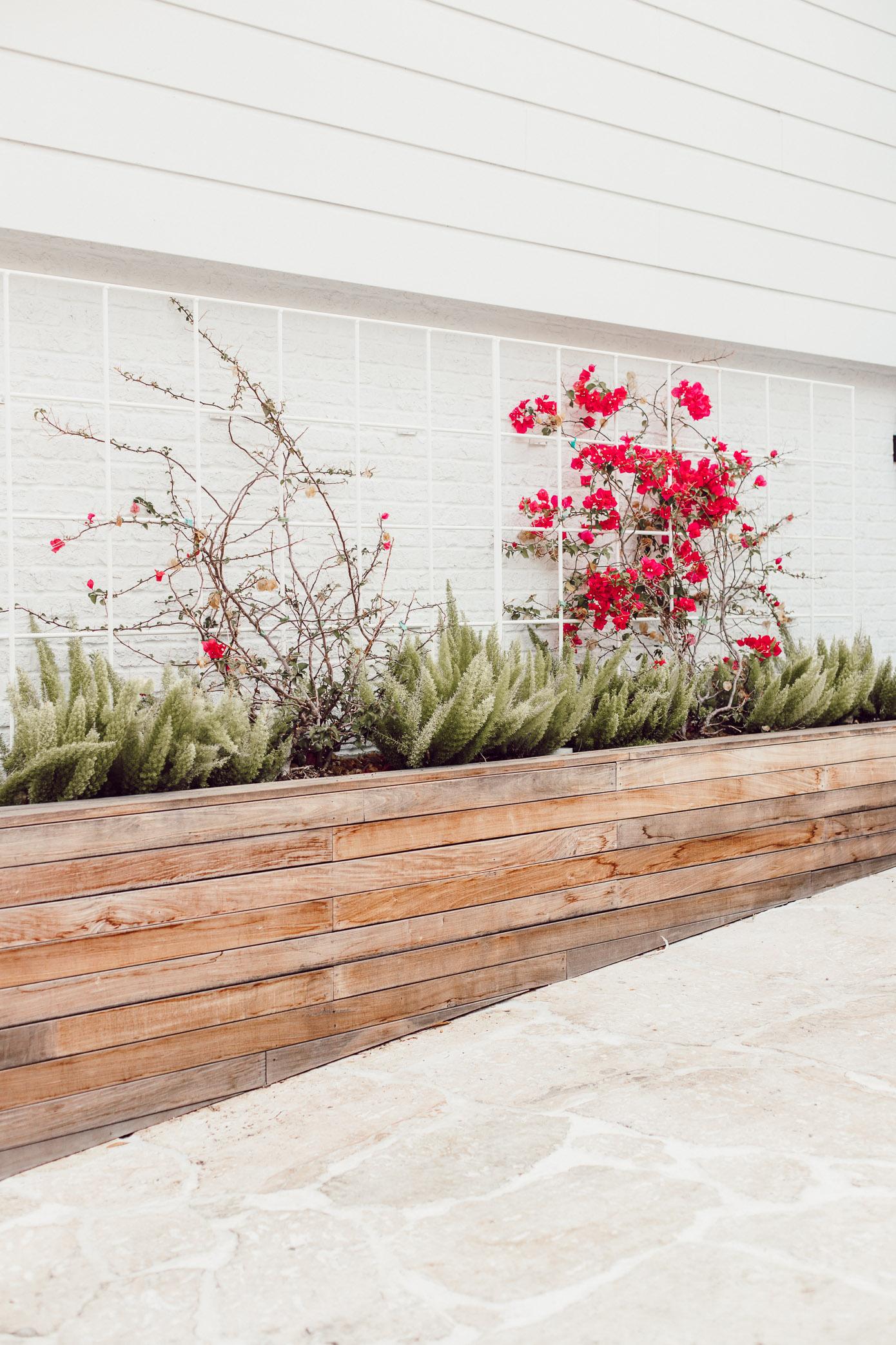 Wood Plant Box | Louella Reese