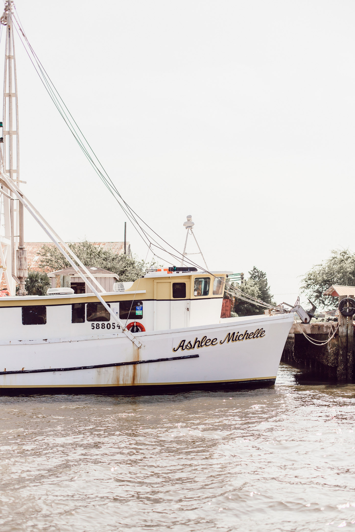 Things to do in Amelia Island   Shrimp Eco Tour, Family Activities   Amelia Island Travel Guide   Louella Reese