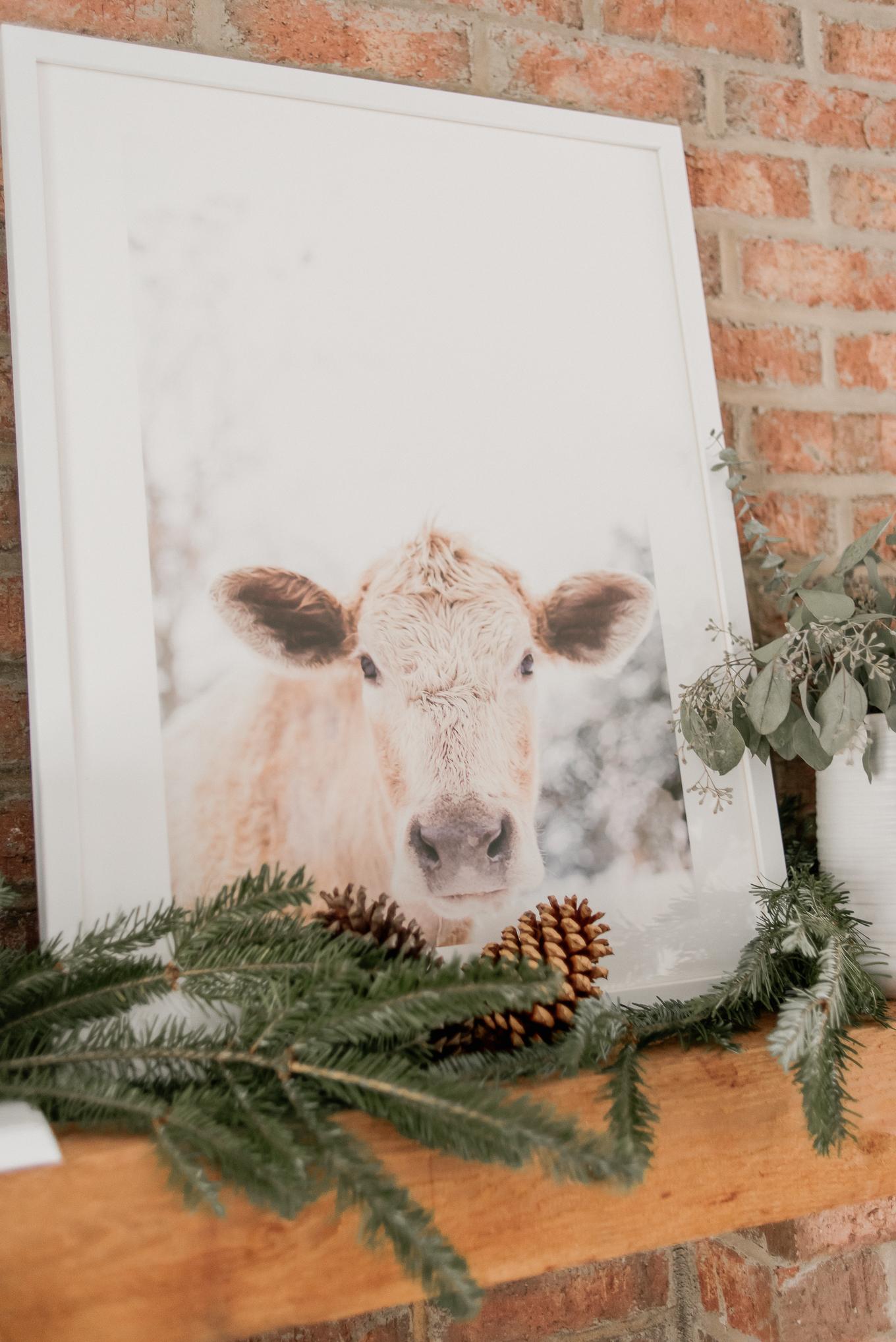 Cow Print | Farm Animal Decor | Louella Reese