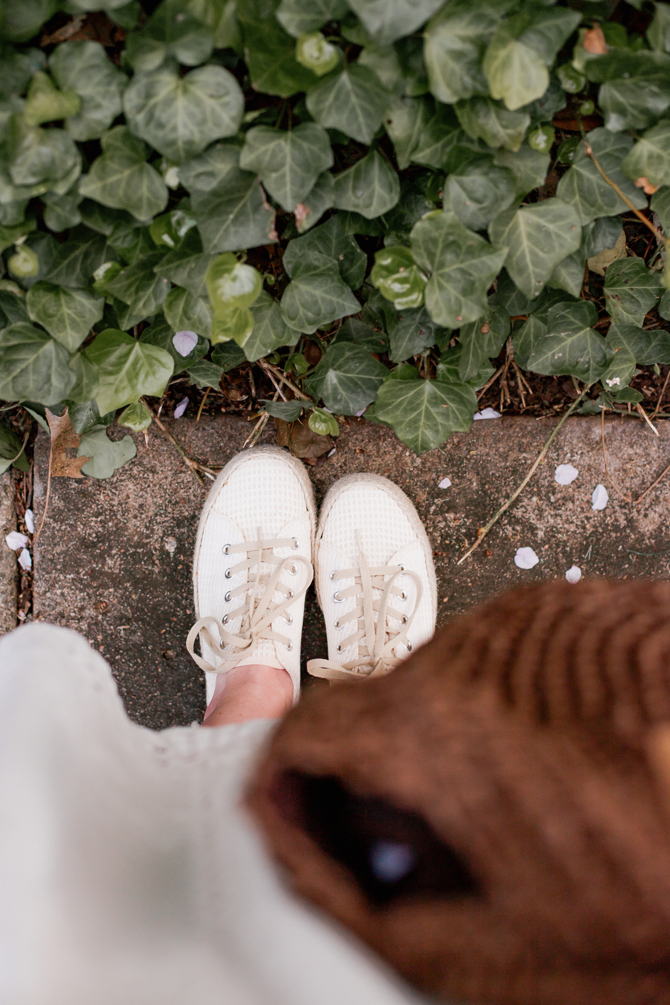 Affordable Espadrille Sneakers   Spring Trends   Louella Reese