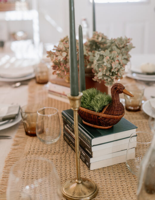 Decorating with Ducks | Wicker Duck, Brass Ducks | Louella Reese