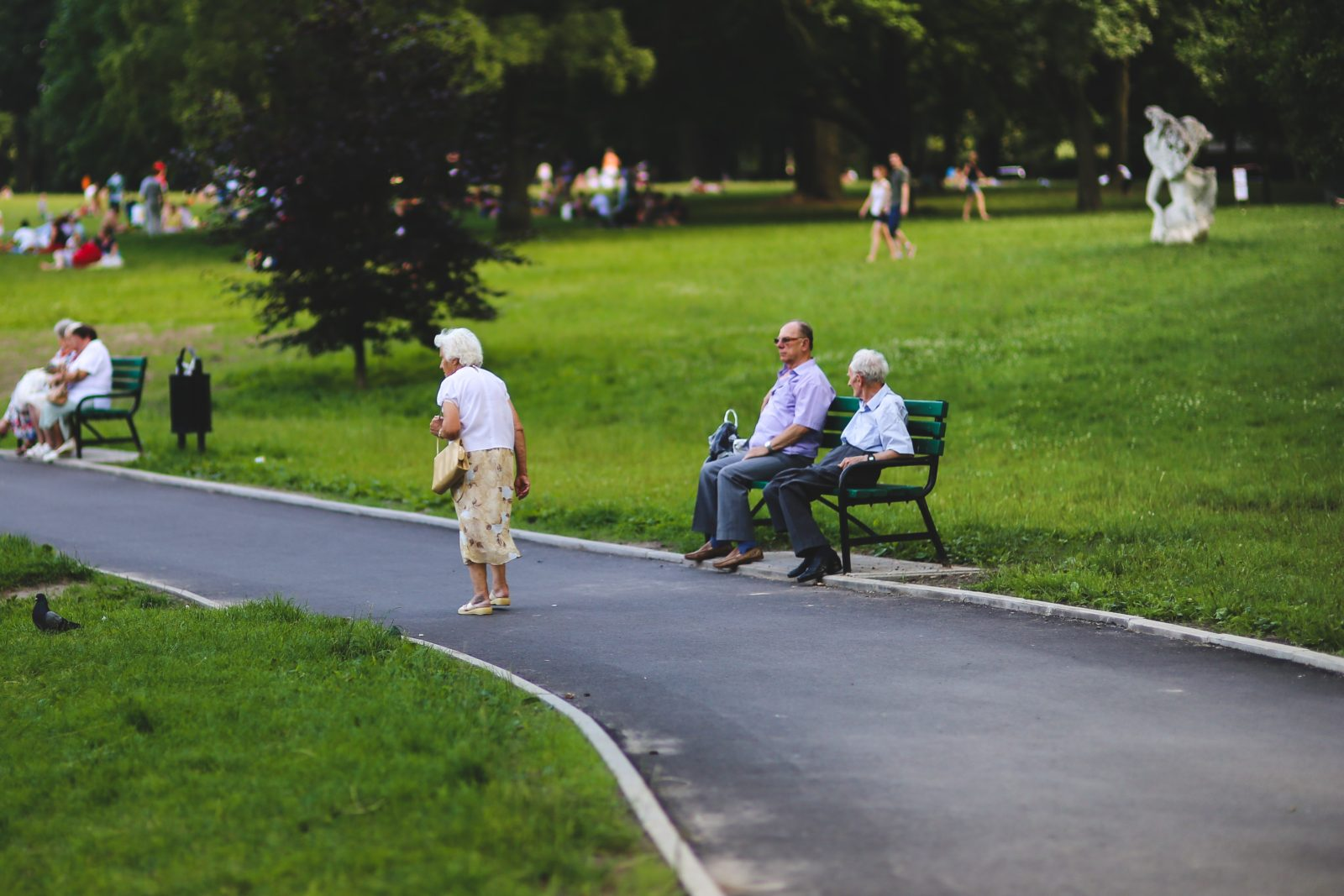 Seniors sitting on a bench at a public park on a nice day