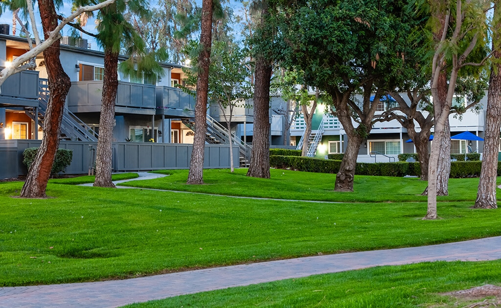 grassy courtyard with trees and pathway