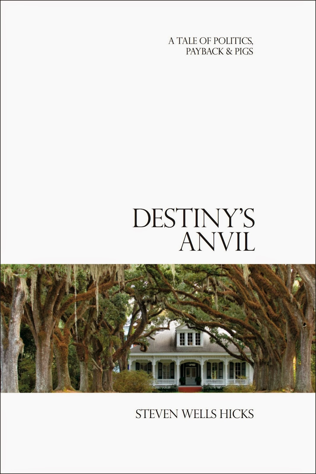 Destiny's Anvil by Steven Hicks