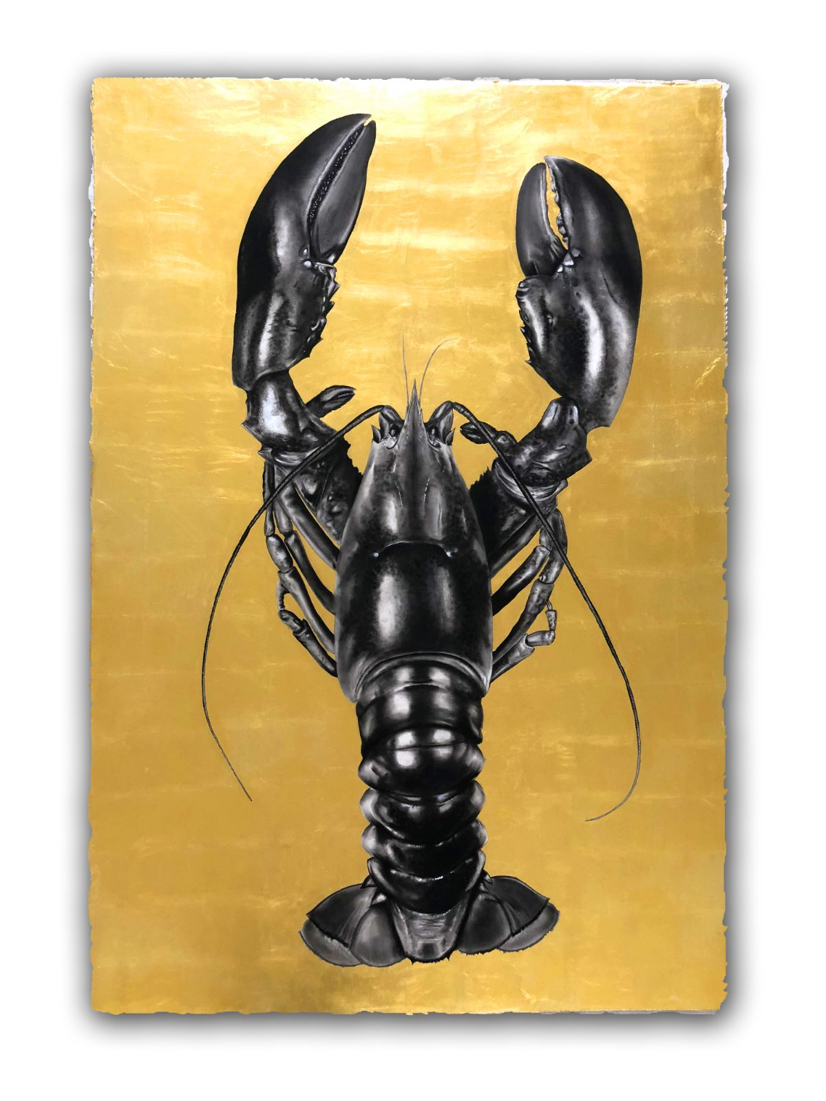 Lobster Gold1