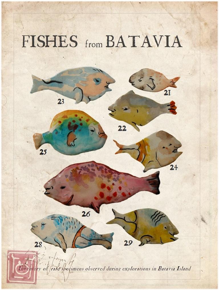 Ambonia Fishes