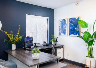 Modern Office Interior with Indoor Plants