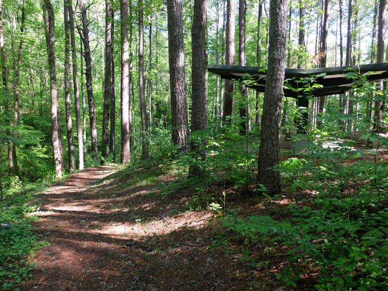 Sykes Park Trail - 1