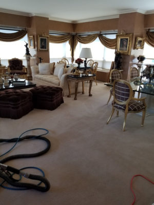 Carpet Cleaning Experts Serving Manhattan & NYC | KG Carpet Cleaning