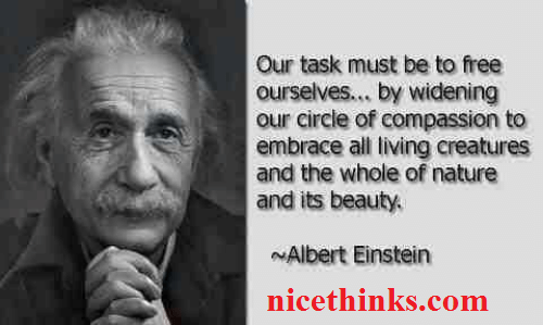 Albert Einstein Life Motivating Quotes