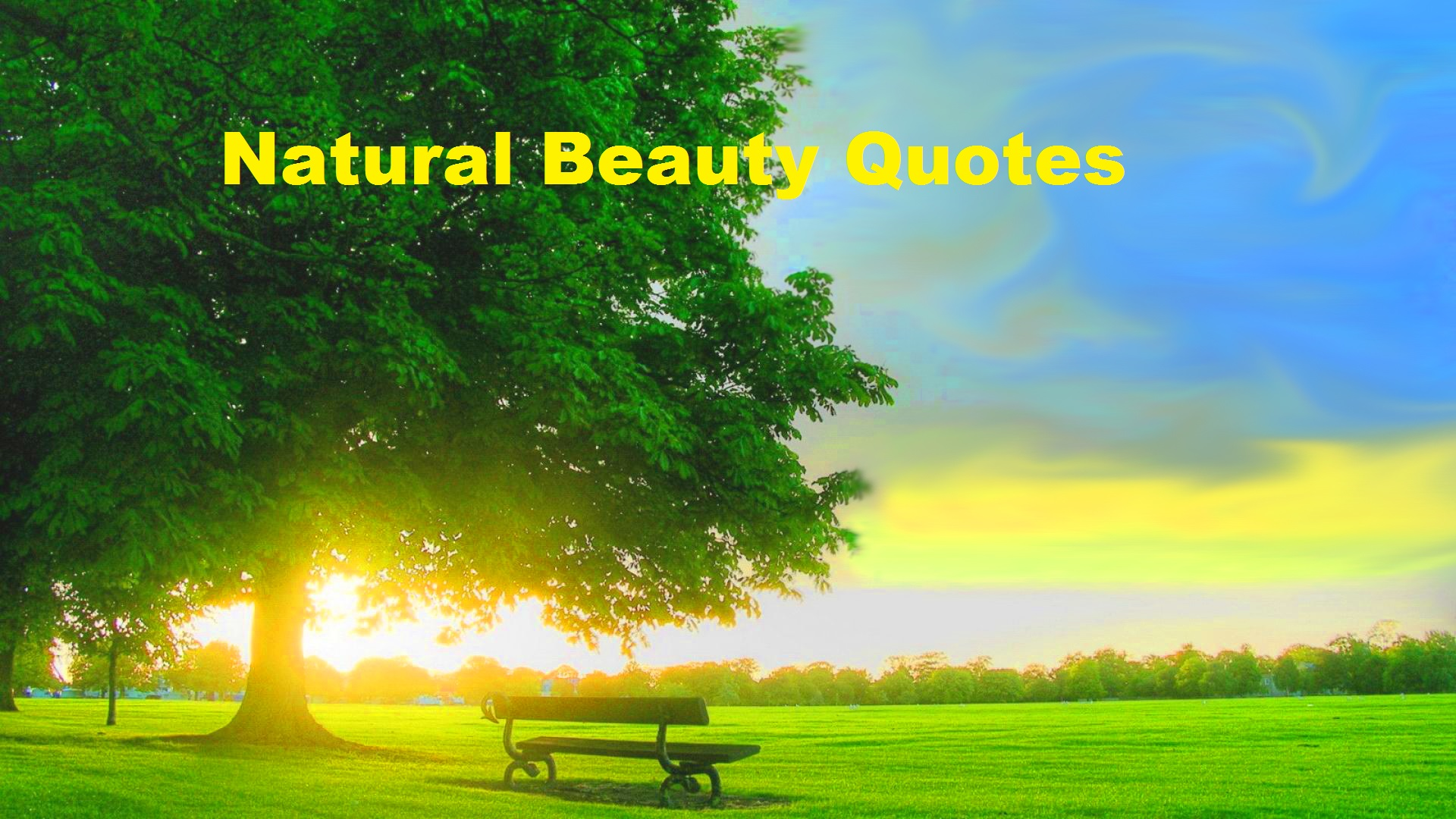 Best Natural Beauty Quotes