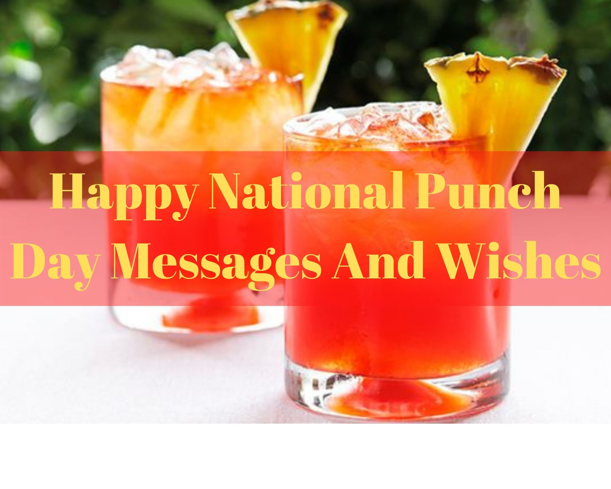 Celebrating National Punch Day