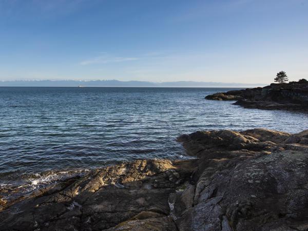 ocean front properties for sale