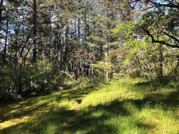 land-for-sale-377