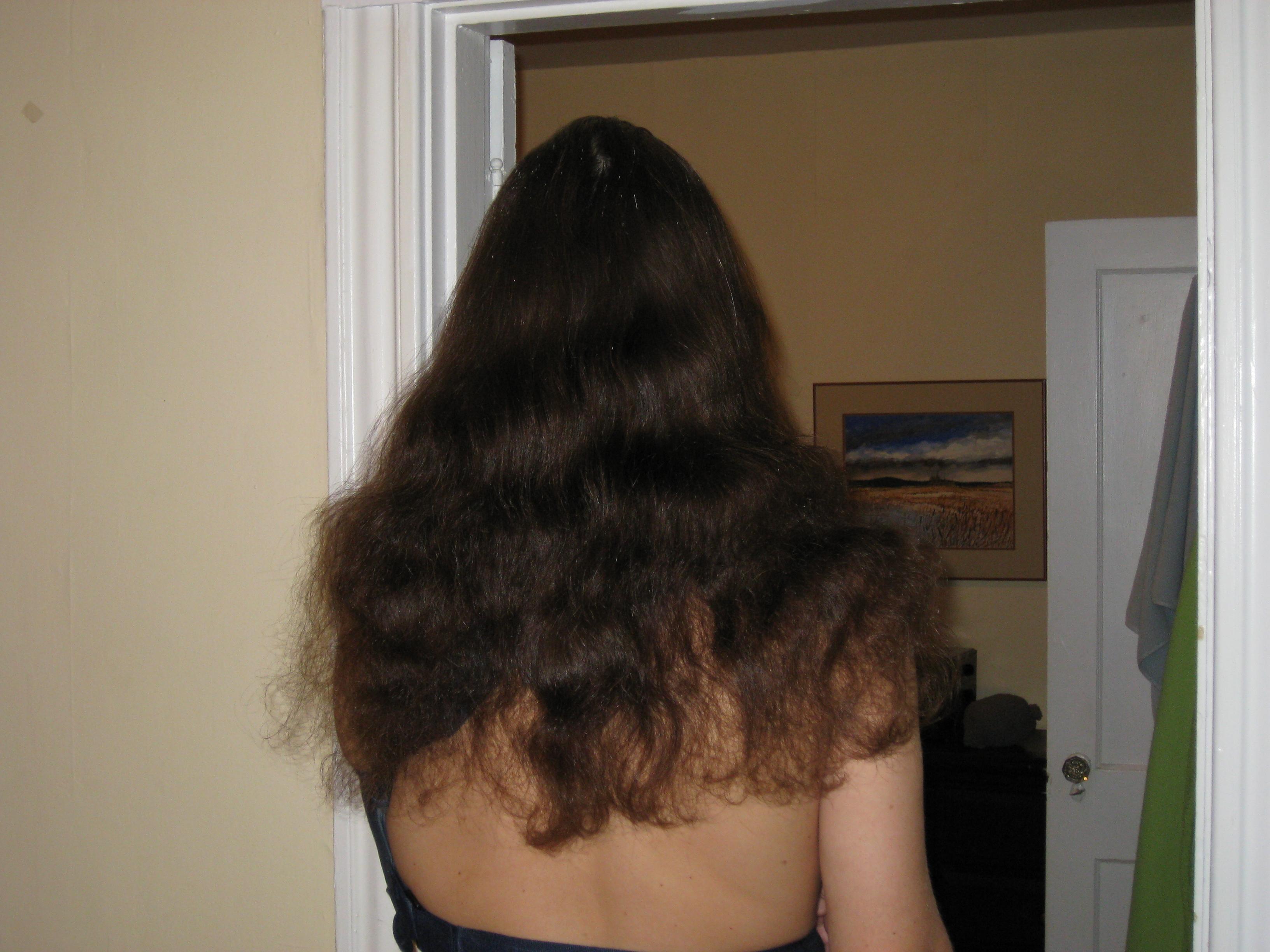 Haircut2.4:8:2010
