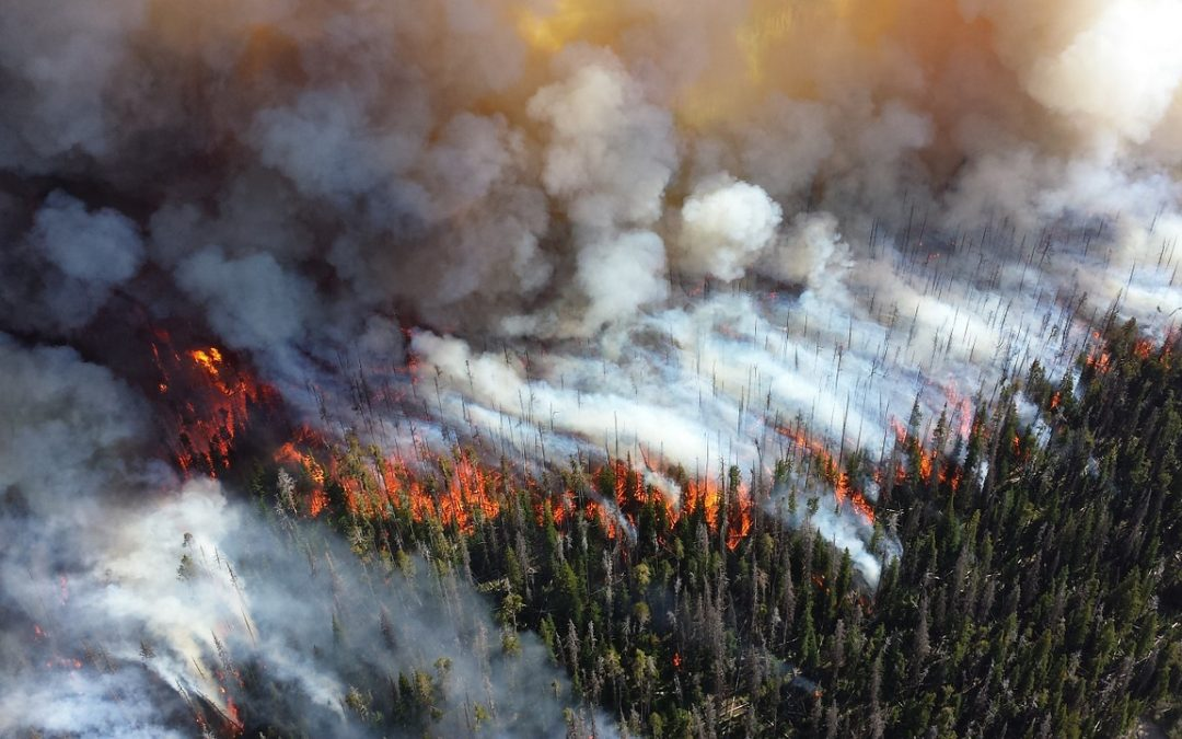 A Four Twenty Seven conference: « Climate Change and Wildfires: Projecting Future Wildfire Potential ».