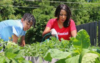 tishaura jones democrat for st louis mayor vegetable garden
