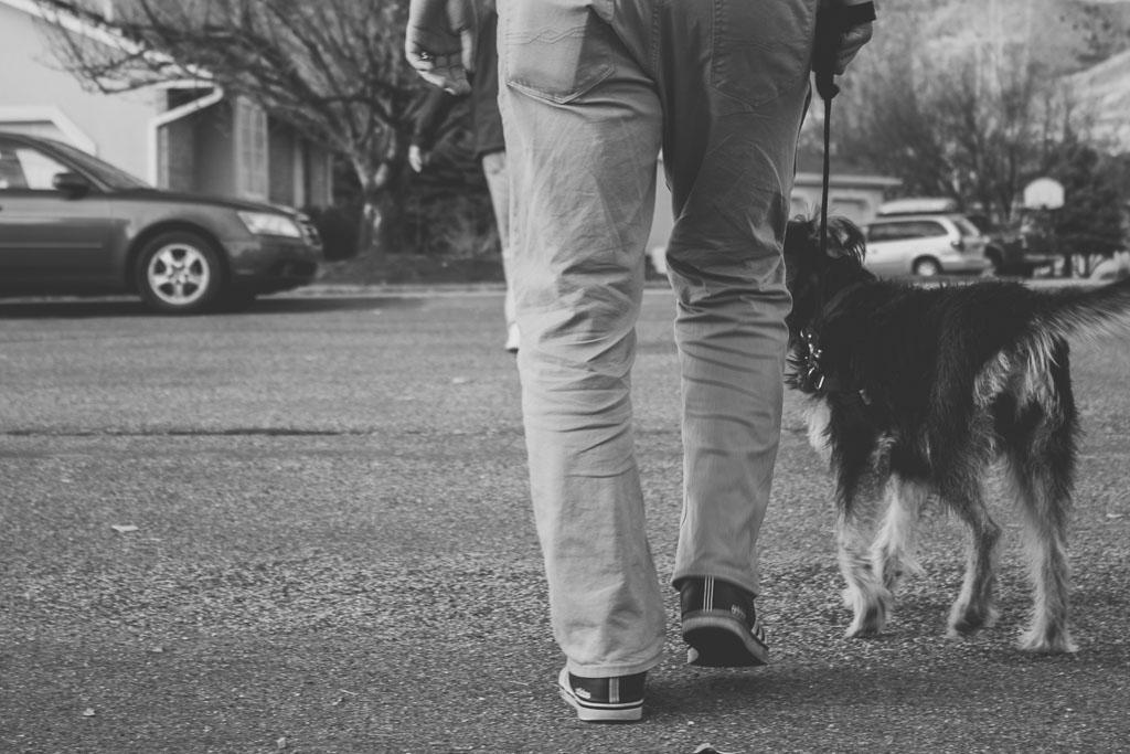 DITL - Walk the Dog