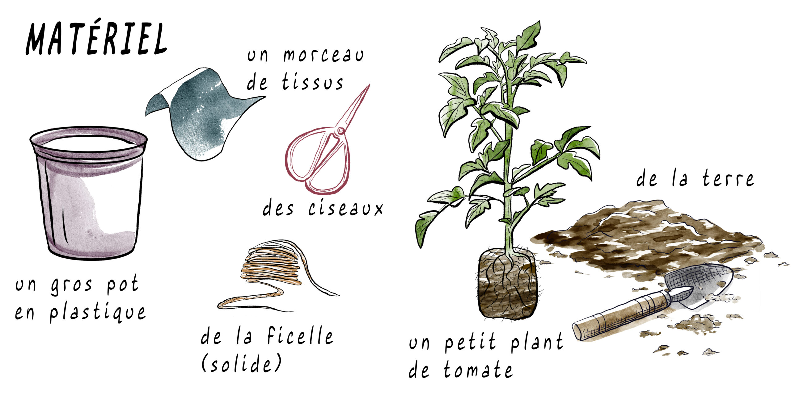 matériel tomate