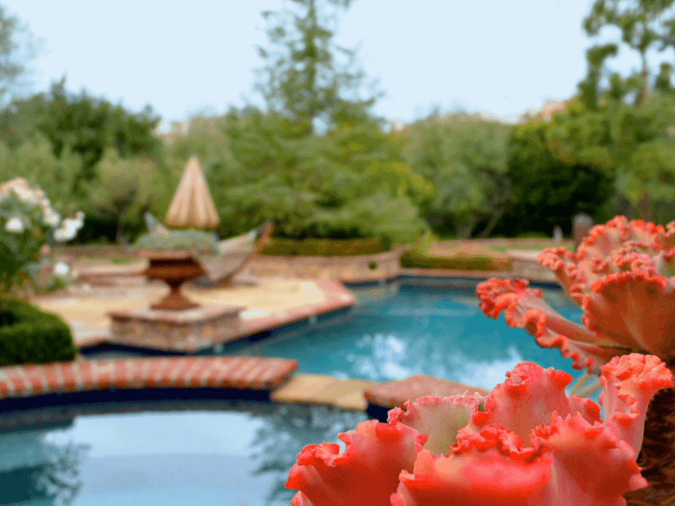 6 Landscaping Mistakes To Avoid (1)