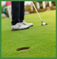 Golf-Grass-Putting-Green