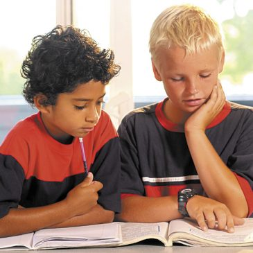Common Core; Who Will Assess the Learning?