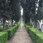 Cemetery in Rome