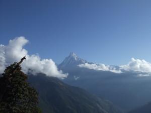Woo hoo!  Made it to the top.  (Tadapani