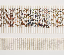 Cacophony: Seize Sort Scribble Screech, 2008, rolled paper, 61.5 x 92 x 6cm