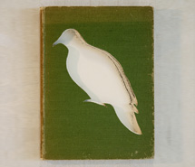The Australian Environment/Bronze Winged Pigeon, 2009, hand carved found book, created as part of a 12 piece book series for Emirates, Wolgan Valley Spa & Resort