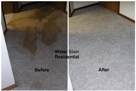 Carpet before and after cleaning