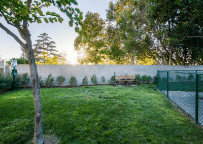 Dog park with grass and trees and fence