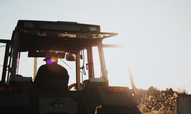 Documentary Film Served Introduction to Farming