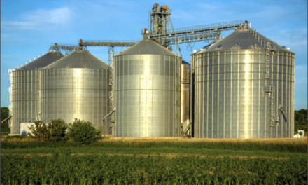 Unifying the National Voice of Cereals