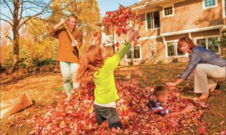 Leaf and yard waste<br>collected weekly for the autumn
