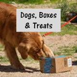 Dogs boxes and treats Payment button