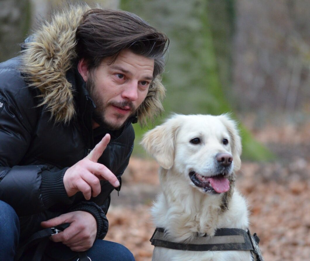 dog training toronto