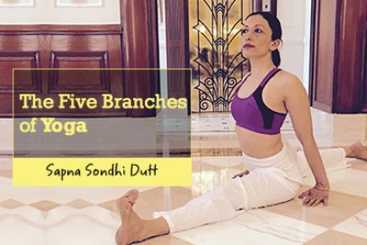 Yoga-graphic : The Five Branches of Yoga [Infographic]