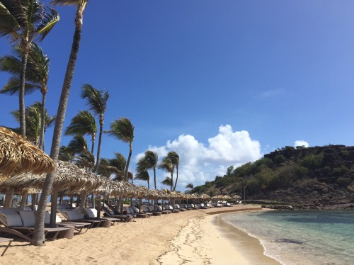 Beautiful calm beach at Le Guanahani with plenty of loungers!